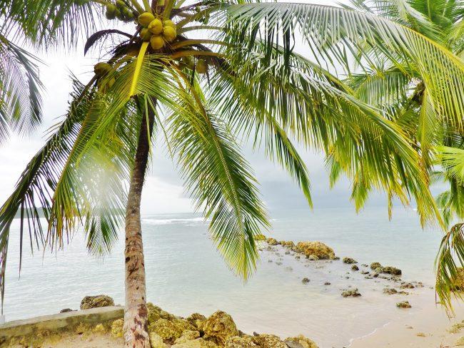 Beach Holiday in Panama
